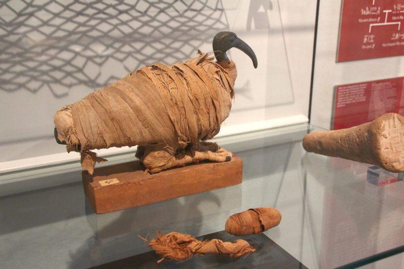 Ägyptische Kunst im Kulturhistorischen Museum von Osnabrück