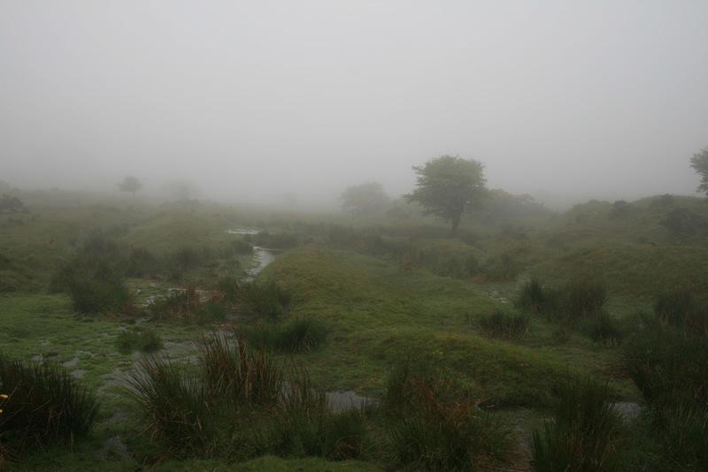 bodmin Moor Nebel Steinkreis Jamaica Inn Daphne de Maurier Annette von Droste Hülshoff