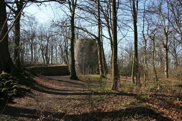Ruine Iburg im Teutoburger Wald