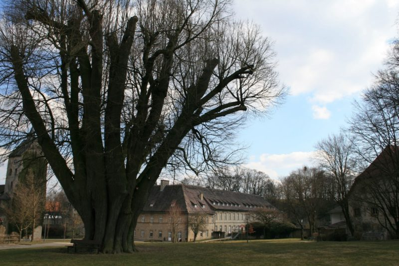 Schloss Gehrden, High Tea Ostwestfalen