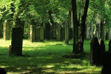 Jüdischer Friedhof in Hamburg-Altona
