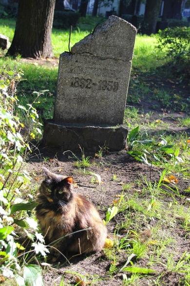 Riga_Friedhof3