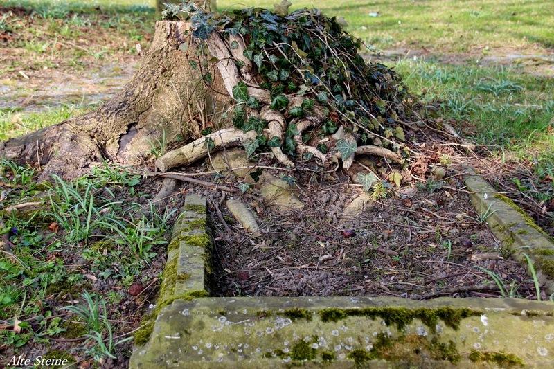 Friedhof_Lemgo_25