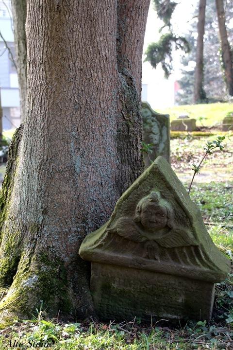 Friedhof Lemgo Sankt Johannes ante Murno