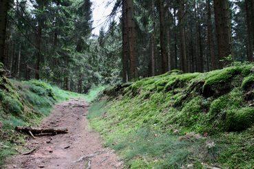 Wanderung zu mystischen Stätten im Eggegebirge