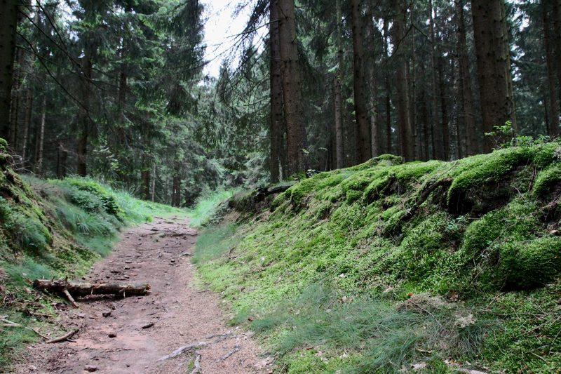 Wanderweg-zu-mystischen-stätten-willebadessen-2