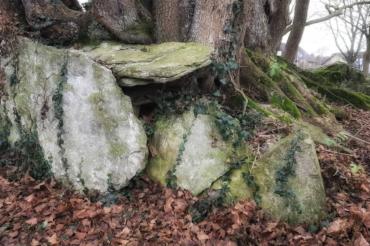 Wandern in Ostwestfalen – Steinkammergräber bei Paderborn