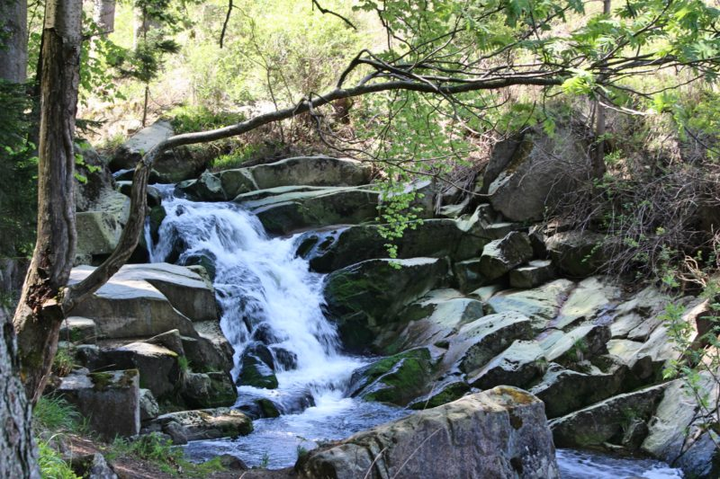 Wandern im Harz, Heinrich-Heine-Wanderweg, Wandern auf den Brocken