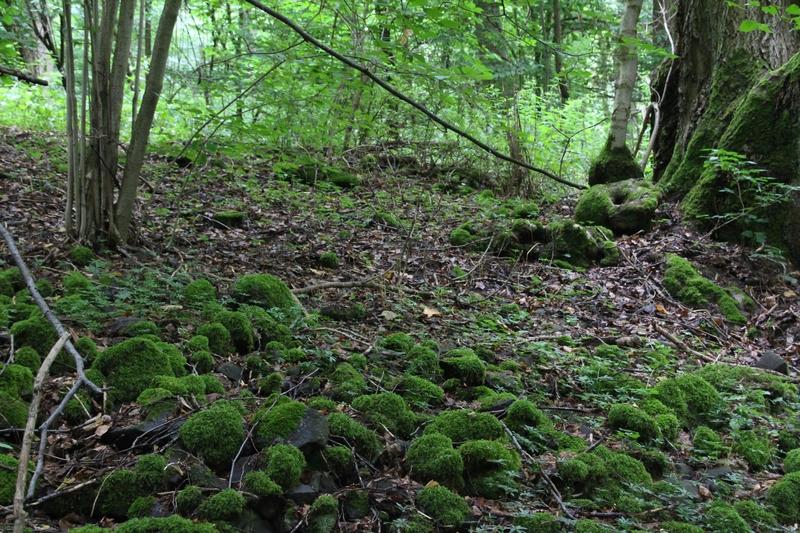 keltische Siedlung, Thüringen, Steinsburg, Römhild