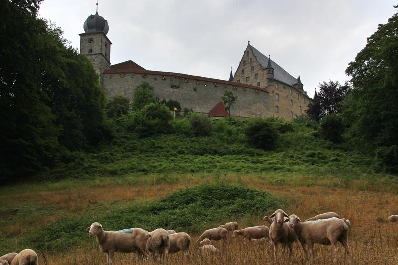 Veste Coburg, Kunstsammlung Coburg, Museum, Luther in Coburg,