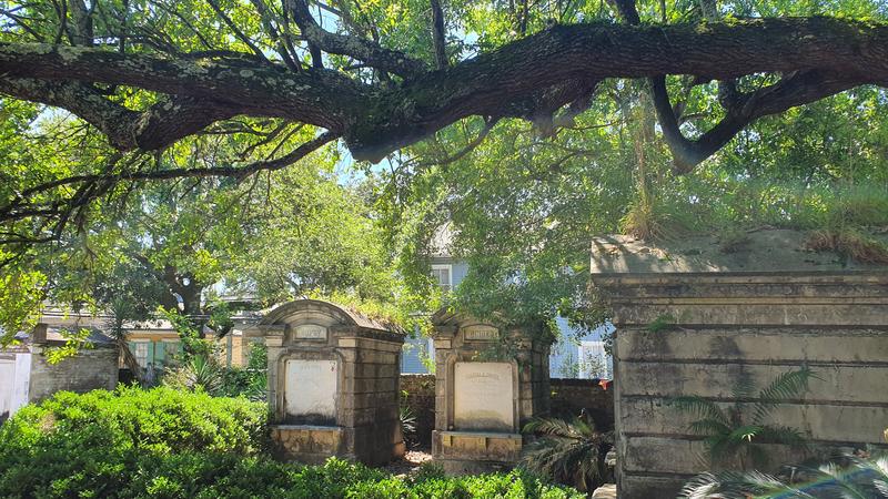 Palmen auf dem Friedhof, sehenswerter Friedhof von New Orleans