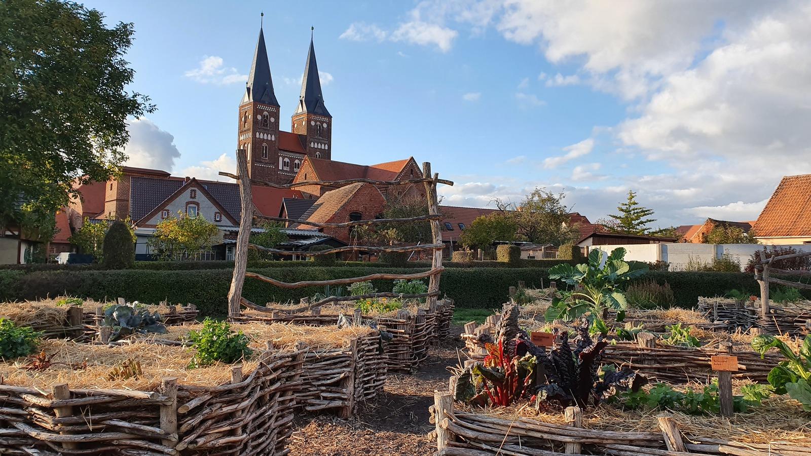 Klostergarten Kloster Jerichow, alte Gemüsesorten im Kloster, Romanische Kirchen in der Altmark
